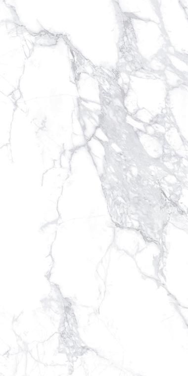WH-1L189006 big flower white
